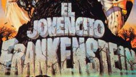Cine a la lluz de la lluna: El jovencito Frankenstein
