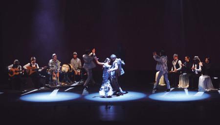 'Sombras', de la Compañía Sara Baras