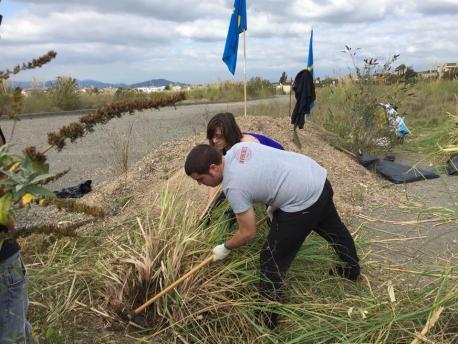Aición contra'l plumeru de La Pampa en Bobes