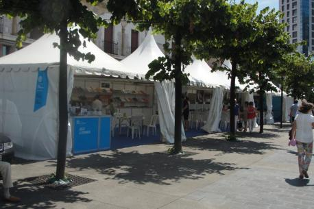 """""""Xixón Sí Puede va facer tolos esfuercios pa caltener el Festival Arcu Atlánticu"""""""