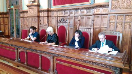 Comisión Especial d'Estudiu sobre'l Réxime de Proteición y Promoción del Asturianu