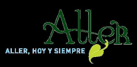 Logu d'Ayer (castellanu)