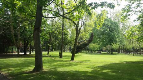 Parque Ferrera web