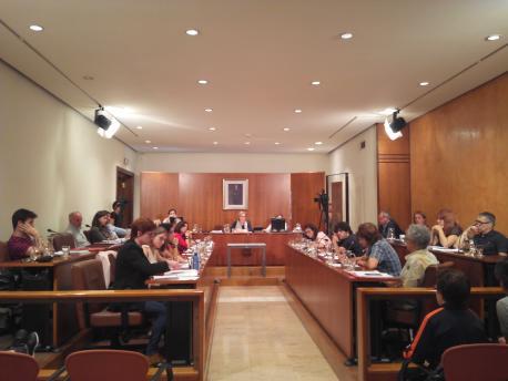 El Conceyu d'Avilés aprobará tamién una proposición de sofitu a la oficialidá del asturianu