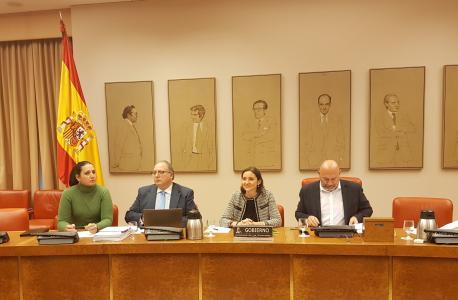 Reyes Maroto na Comisión d'Industria, Comerciu y Turismu del Congresu