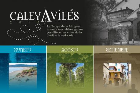 Visites guiaes per Avilés