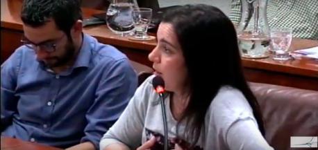 """El Conceyu d'Avilés retrasa l'aprobación de les ordenances d'asturianu a """"depués del branu"""""""