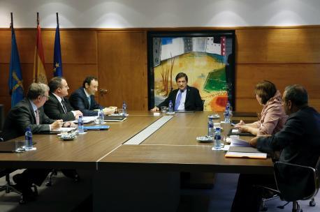 El Conseyu de Gobiernu concede la Medaya d'Oru d'Asturies a los descubridores de Tito Bustillo y a los centros asturianos centenarios