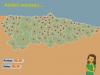 Conceyos d'Asturies