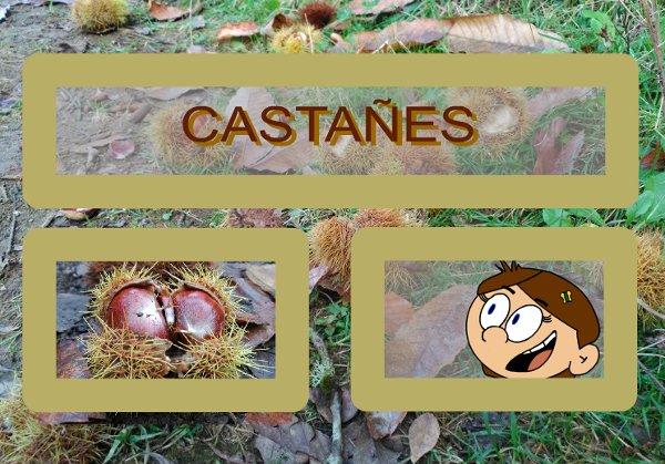 Cuentu 'Castañes'