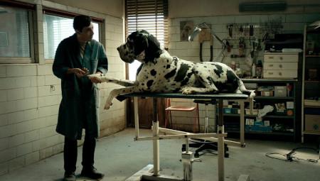RADAR: 'Dogman'
