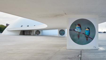 Ruta d'Arte 'Al aire libre'
