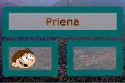 Priena