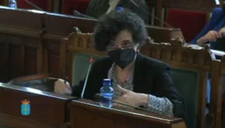 Berta Piñán Comisión Cultura toponimia