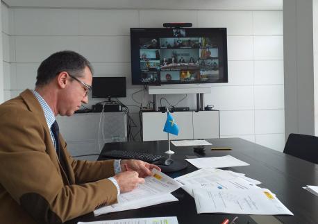 Pablo Ignacio Fernández Muñiz xunta telemática Conseyu Interterritorial Salú