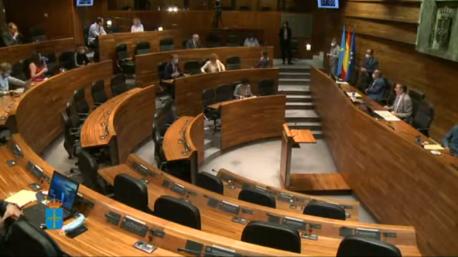 Plenu Xunta Xeneral 14 de xuneru 2020