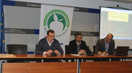 Tino Cortina, Alejandro Calvo y Daniel Ruiz datos DOP Sidra d'Asturies 2019