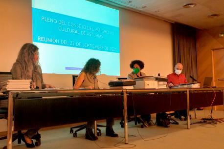 Berta Piñán nel Plenu del Conseyu del Patrimoniu Cultural